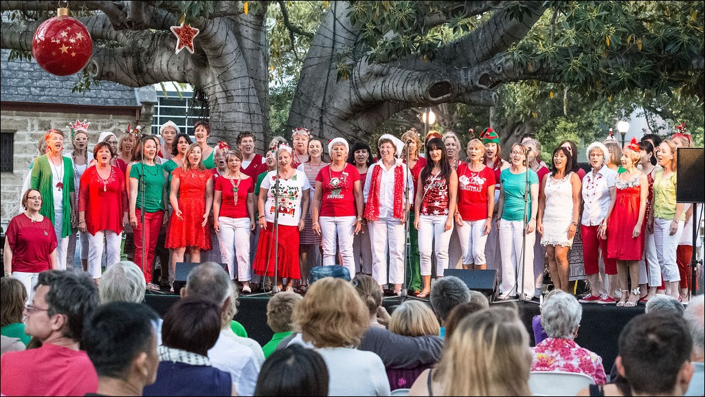 The chorus sing under the fig tree in Fremantle